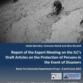 Read the Report of the Expert Meeting on the ILC Draft Articles